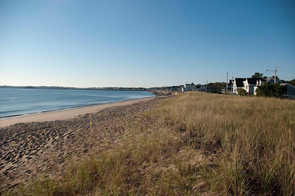 Ferry Beach-5