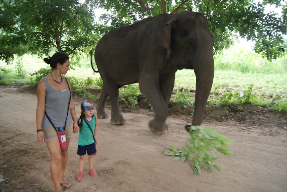 Visitar Elephants World en Kanchanaburi