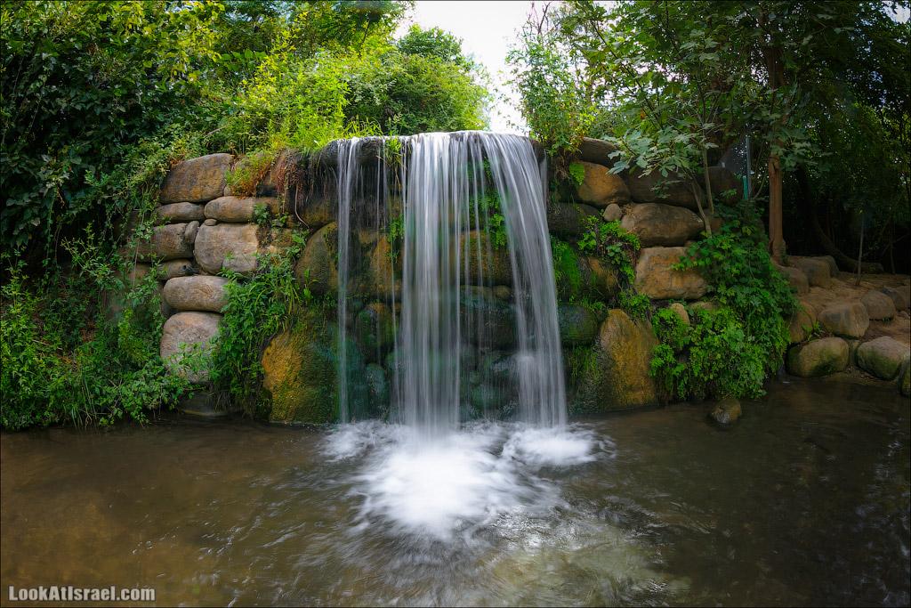 Одно фото зеленого рая