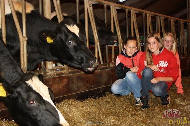 BVA / VWK kamp 2012 - kamp201200025.jpg