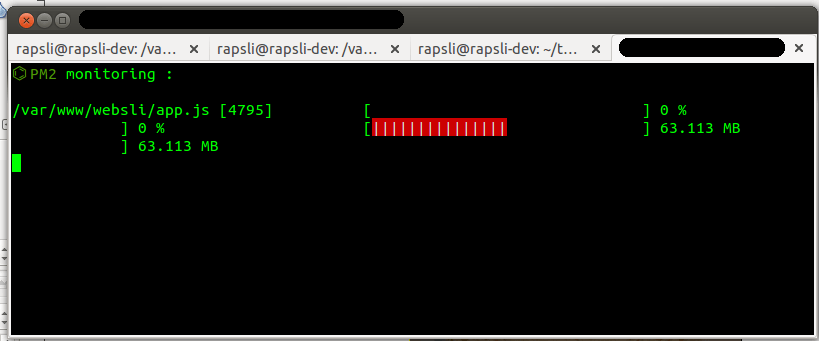 PM2 Node.js Monitor