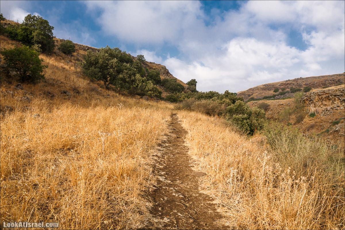 Верхний и нижний Завитан | Zavitan stream | נחל זוויתן | LookAtIsrael.com - Фото путешествия по Израилю