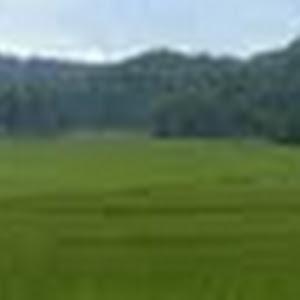 P1060471_Panorama.jpg
