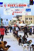 Iditarod2015_0240.JPG