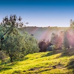 Autumn-2017-spiritual-meditation-retreat-Satguru-Sirio-Satsang21.jpg