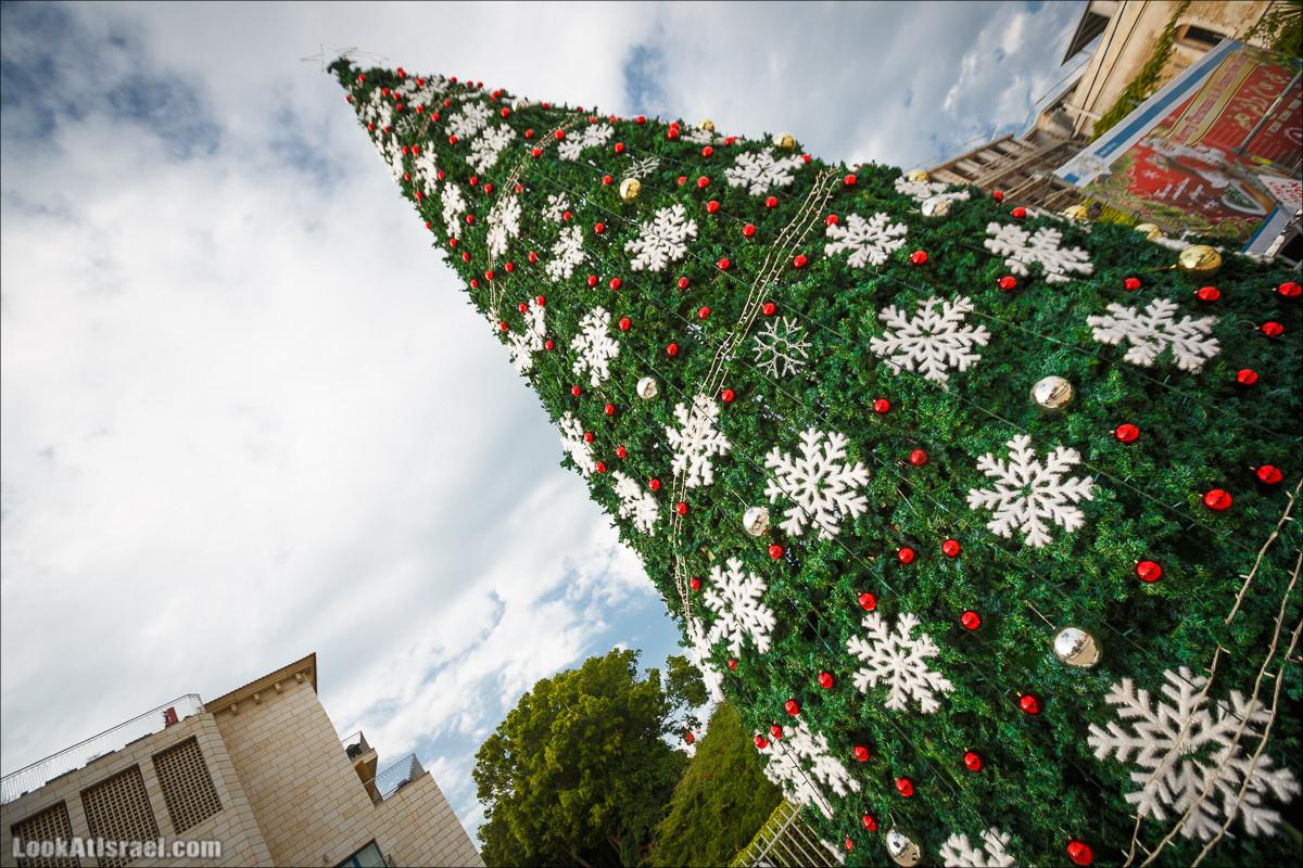 Рождественская ёлка в Яффо 2015 | Jaffa Christmass tree 2015 | LookAtIsrael.com - Фото путешествия по Израилю