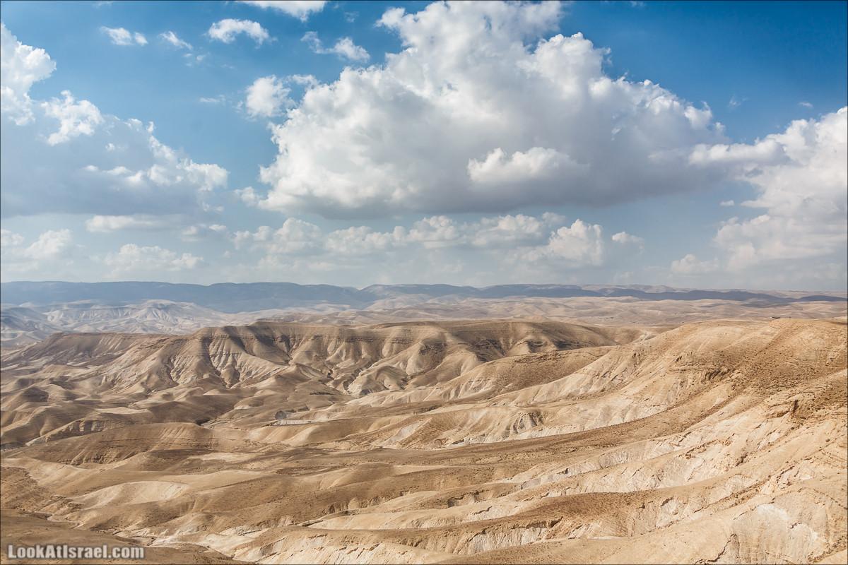 Пустыня в тени дождя