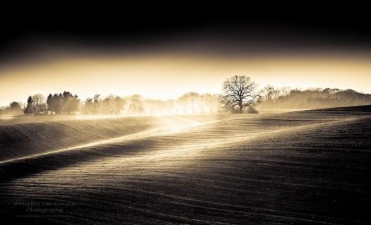 풍경 사진 20140325 Markus Landsmann