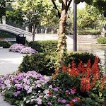images-Seasonal Color-seasonal_b1.jpg