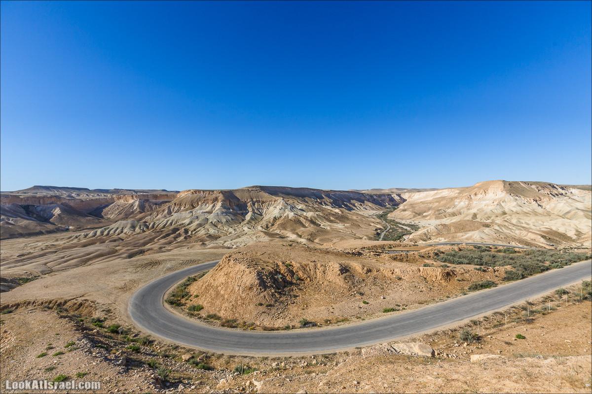 Пустынные картинки Негева и Травы | LookAtIsrael.com - Фото путешествия по Израилю
