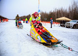 Iditarod2015_0459.JPG