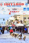Iditarod2015_0221.JPG