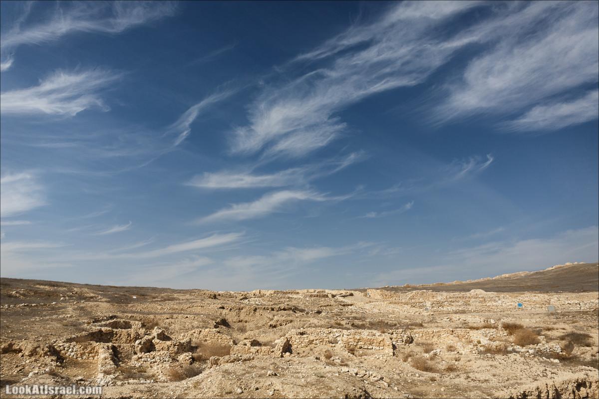 Тель Арад   Tel Arad   תל ערד   LookAtIsrael.com - Фото путешествия по Израилю