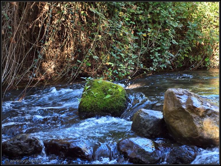Река Хермон, водопады Баниас | LookAtIsrael.com - Фото путешествия по Израилю