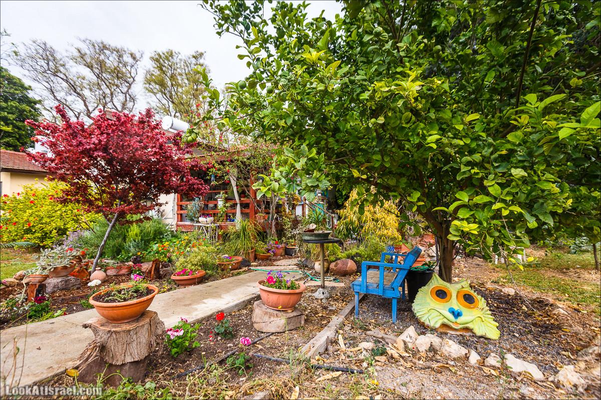 Дом в кибуце   LookAtIsrael.com - Фото путешествия по Израилю