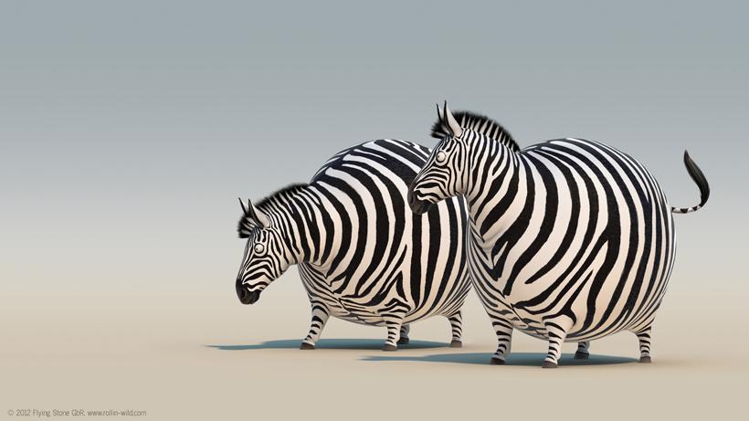 *非洲大草原野生「胖」動物:像顆彈力球Q彈有勁! 8