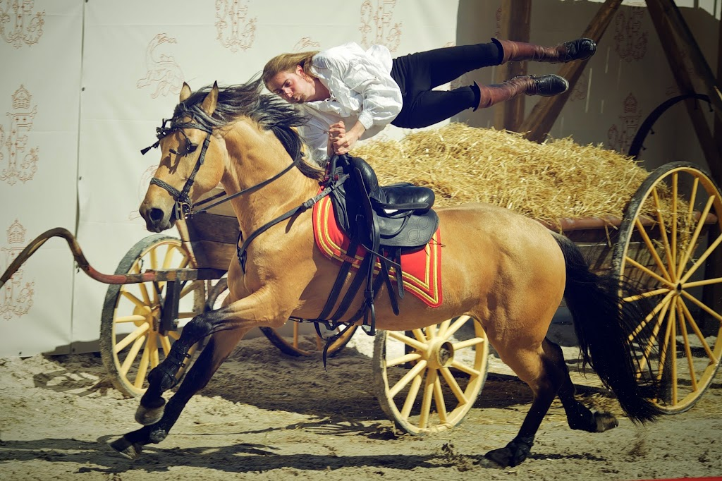 (161)spectacle-equestre-chambord©Ludovic-Letot-domaine-National-Chambord