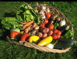 organic agricultural produce