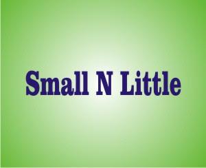 Perbedaan Small Dan Little   Penggunaannya Dalam Bahasa Inggris