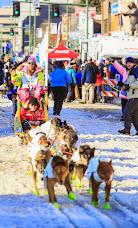 Iditarod2015_0398.JPG