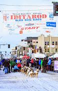 Iditarod2015_0212.JPG