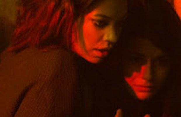 Em Viral, o surto de um vírus apaga a maioria da população humana, uma jovem mulher documenta a nova vida de sua família em quarentena e tenta proteger sua irmã infectada.