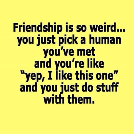 friends quotes for best friends