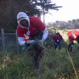 IVLP 2010 - Volunteer Work at Presidio Trust - 100_1407.JPG