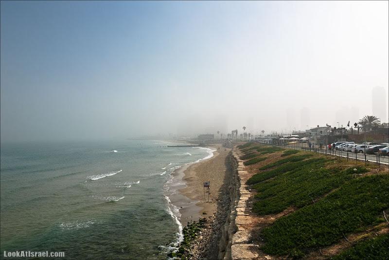 Blur of Tel Aviv
