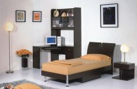 Chic Home Design: Single Bed Design