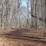 Institute Woods 6K - IMG_4635.JPG