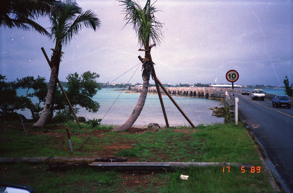 0430On the Island