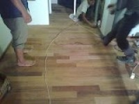 kayu merbau