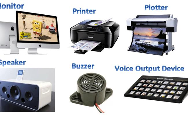 Burung Nury Perangkat Keras Komputer Teknologi Input Output Komputer Dan  Central Processing Unit – Contoh Kumpulan