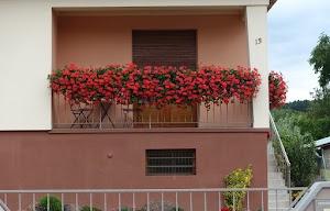 150804.Maisons.Fleuries21.jpg