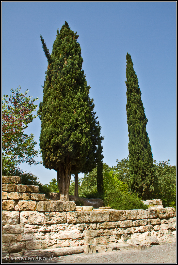 Парк Бейт Шеарим  Beit Shearim   LookAtIsrael.com - Фото путешествия по Израилю