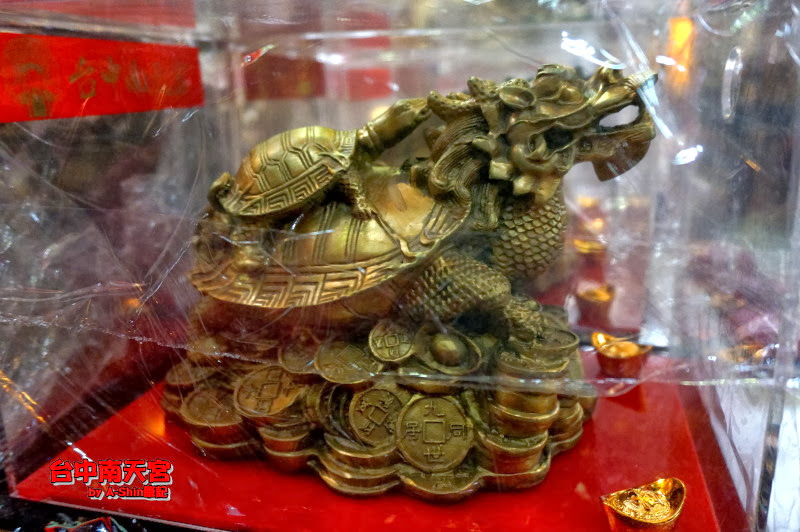這是金錢龜近拍