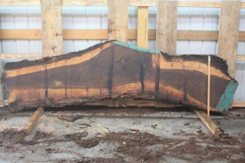 Walnut 296-10  Length 11' Max Width (inches) 29 Min Width (inches) 18 Thickness 10/4  Notes :