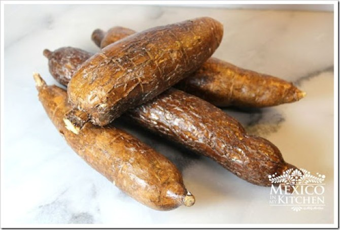 Cassava- root-Yuca-1-A copy
