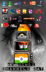 TV Hindi Channels Sat APK