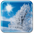 /APK_Winter-Live-Wallpaper_PC,29366243.html