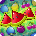 /fruit-party