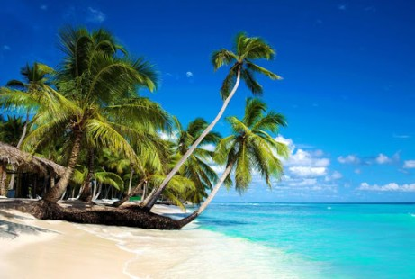 Beautiful Beach Wallpaper APK
