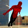 Spider Mystery