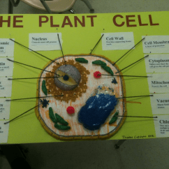 Plant Cell Diagram Only Volvo Wiring Diagrams S60 Atilley Licensed For Non Commercial Use