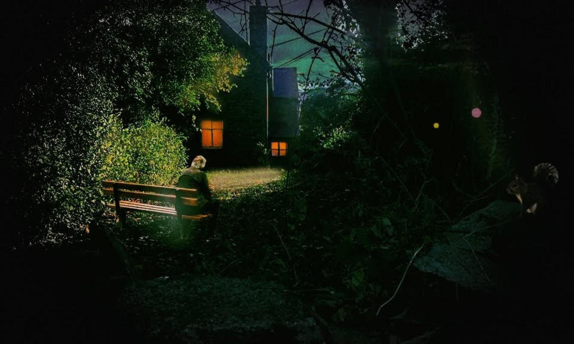 Basking In The Evening Light