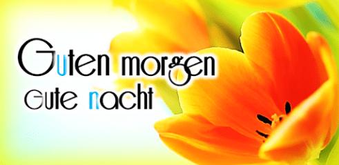 Guten Morgen Gute Nacht Kostenlos Downloaden Für Android Deutsch