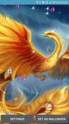 Phoenix Live Wallpaper Android Apps AppAgg