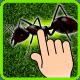 Ant Smasher - Kids Games windows phone