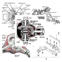 Scuba Gear Diagram Club Car Precedent 12 Volt Battery Wiring Engine Parts Doobclub Com Online Rh 9 19 Lightandzaun De Labeled Diver Modern Diagraphm